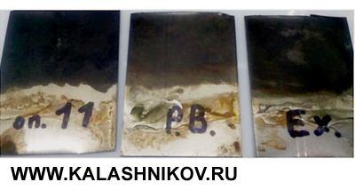 Обработанные составами «Нева-В», Perma Blue иExcalibur образцы после выдержки вводе напротяжении 72часов