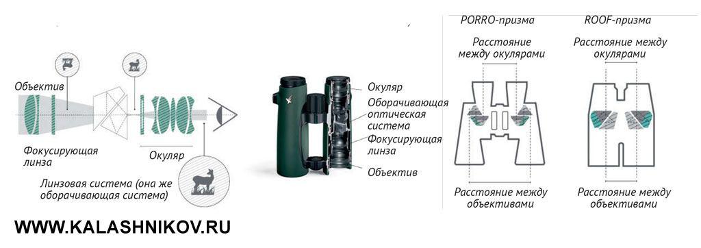Схема расположения линз в биноклях (с отображением пути светового луча)