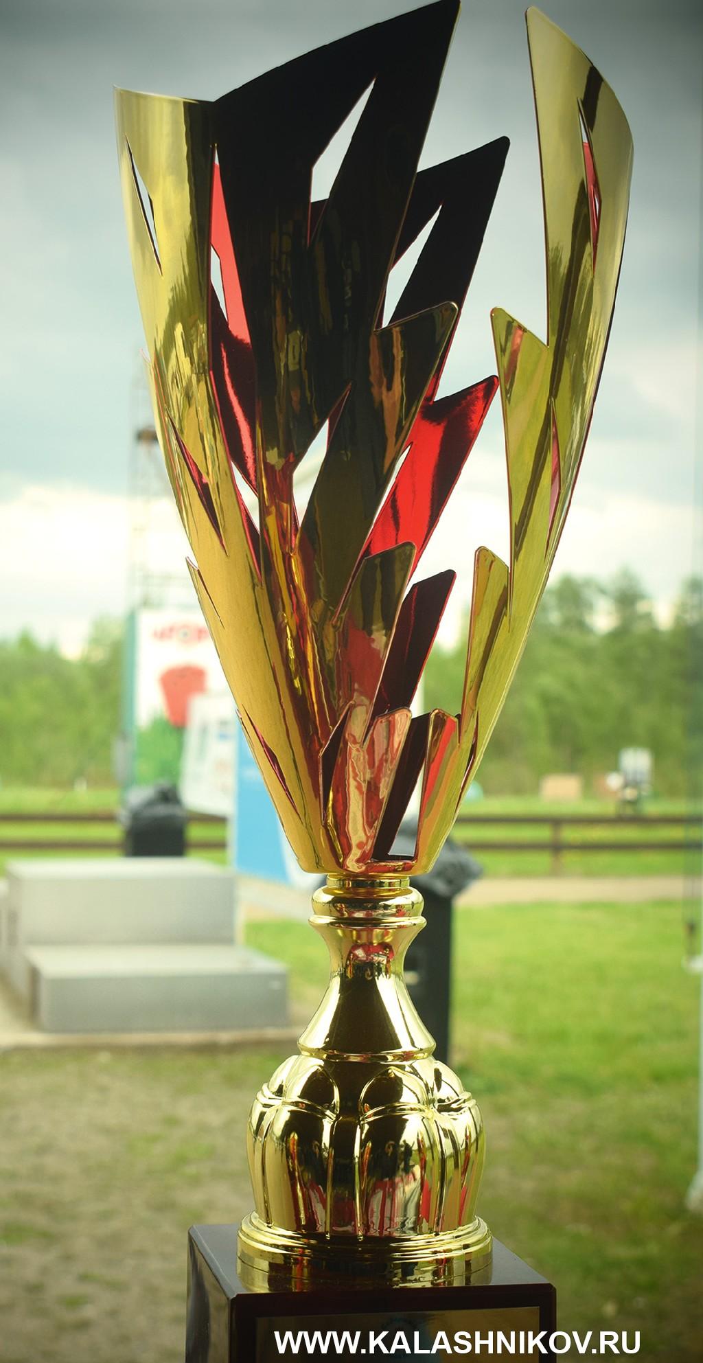 Кубок стендового турнира «Северный тюльпан»