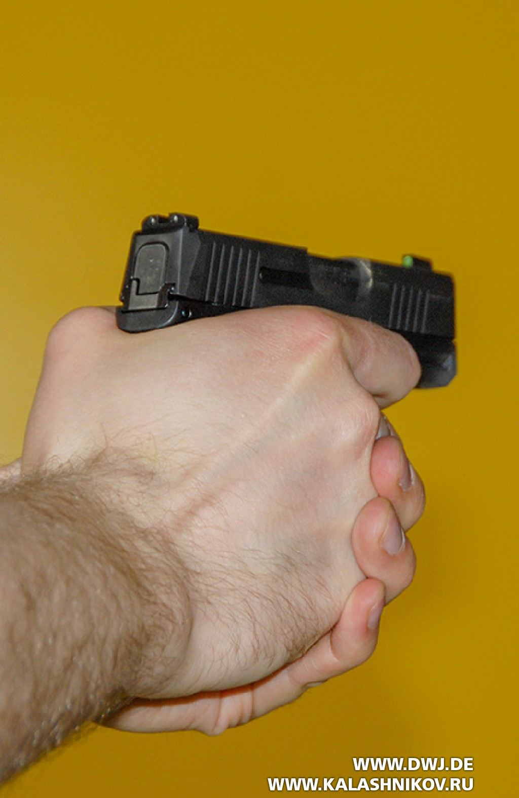 Пистолет SIG Sauer P365