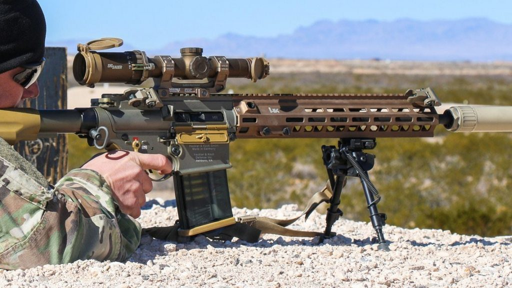 M110A1, Squad Designated Marksman Rifles, SDMR