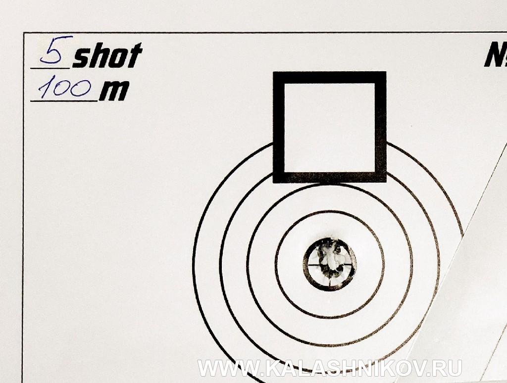 мишень  отстрела высокоточной винтовки Bespoke Gun