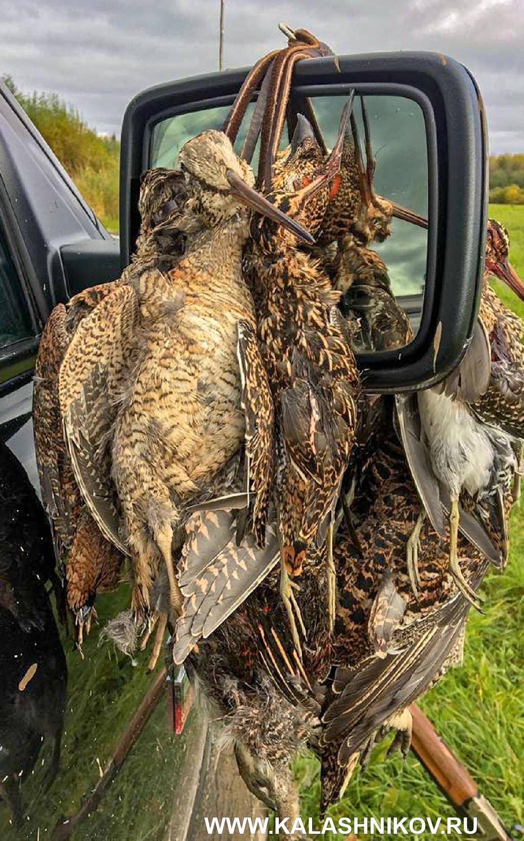 Охотничье ружье «Левша-Т» ЛТ5001. Фото трофеев 1